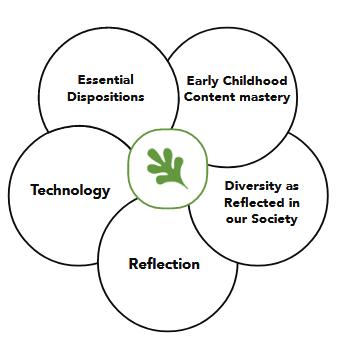 ECE Conceptual Framework
